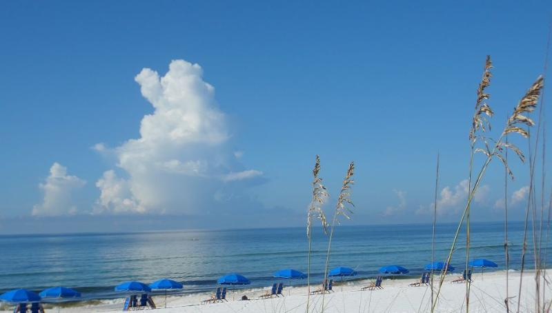 Fort Walton Beach Rental Homes Beach Traveler