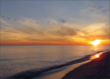 Orange Beach Condo For Sale, Alabama Gulf Coast