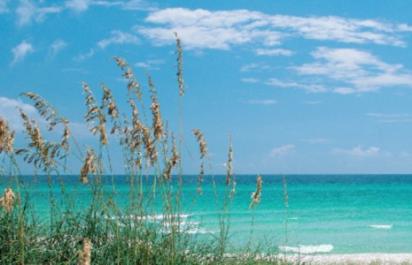 Gulf Coast Beach-16